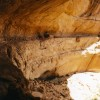 Grand Gulch Cliff Dwellings