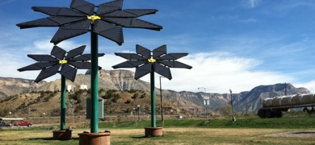 Solar Flowers at the Parachute Rest Area
