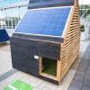 Energy Efficient Dog Haven