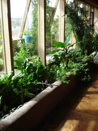 The Earthship features two walls of slanted glass both with planters inside