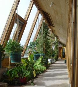 plants in an earthship window