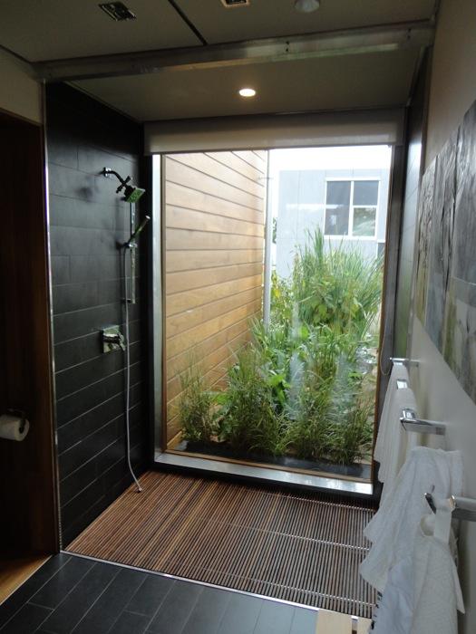Outdoor Shower, Almost