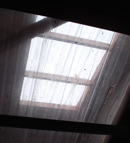 Shed Skylights