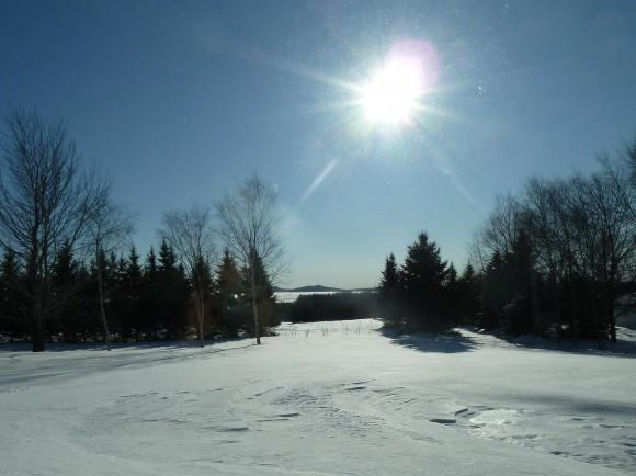 Beautiful Sunny Winter Day – Low Sun Angle on 1/2/2013