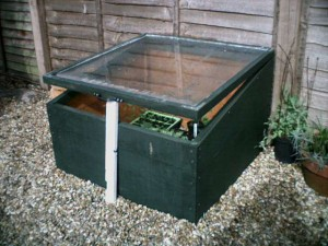 wooden cold frame with glass top to grow vegetables