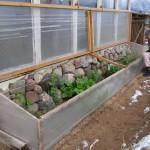 passive solar cold frame box