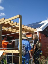 Kentucky And Indiana Team Build The Phoenix House Green